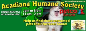 St Patricks Adoption Event
