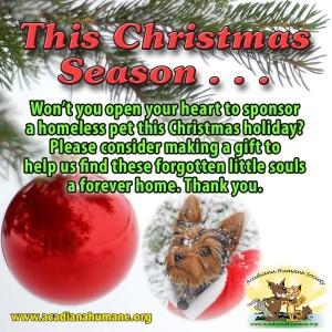 HolidaySponsorSqAHS