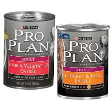 Pro Plan Dog Can