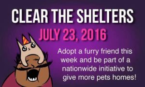 ClearTheShelters